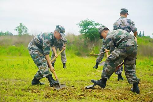 机动哨兵助力部队野外驻训视频监控